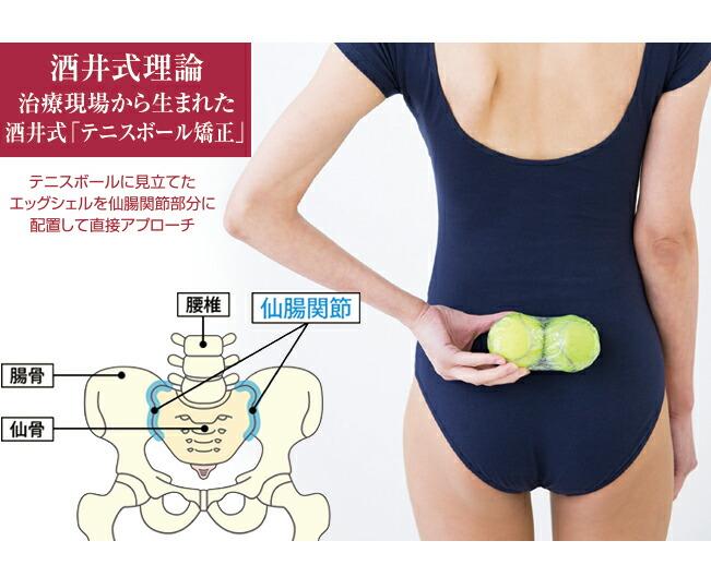 酒井慎太郎監修 腰用サポートベルト