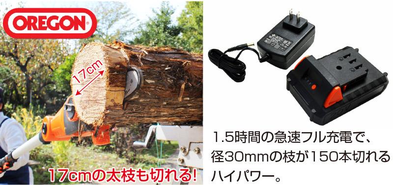 コードレス高枝電動チェーンソー